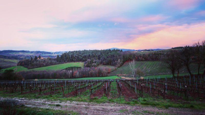 Groupon Getaway Review: Tuscany Trip